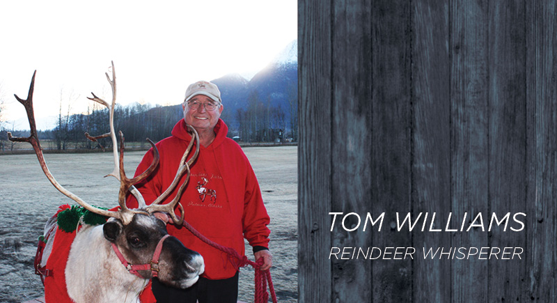 GCI_AKBR_Portait_TOMWILLIAMS_800x435