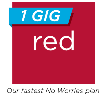 1 GIG Red