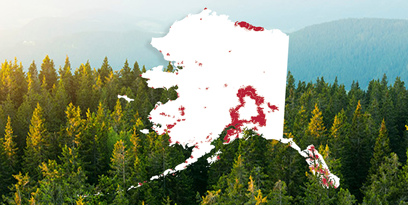 Alaska Mobile Coverage | GCI